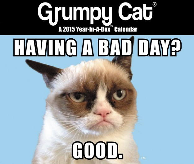 Grumpy Cat Mini Desk Calendar