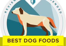 Extensive Research on Dog Food by Reviews.com