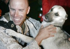 Nubs and Marine Major Brian Dennis Are Reunited