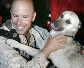 Nubs and Marine Major Brian Dennis